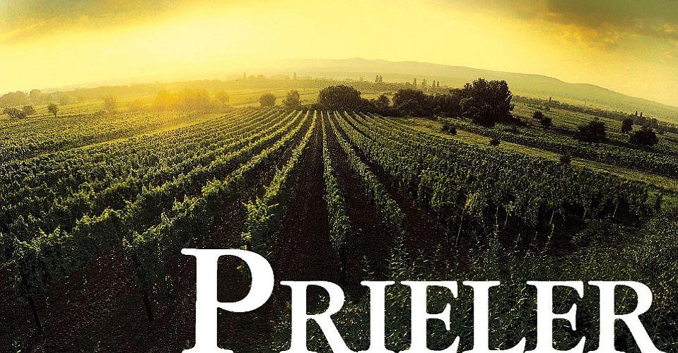 WeingutPrielerBild2